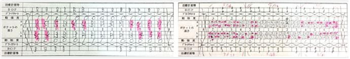 実証プログラムグラフ